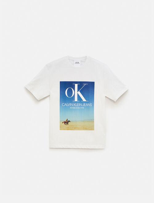 CALVIN KLEIN EST 1978 LANDSCAPE OK ロゴ クルーネック Tシャツ