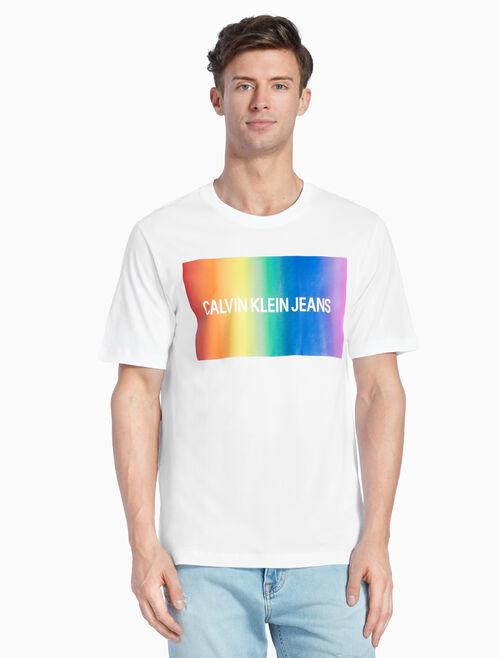 CALVIN KLEIN レインボーロゴ T シャツ