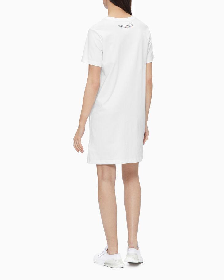CALVIN KLEIN レインボーロゴ T シャツドレス