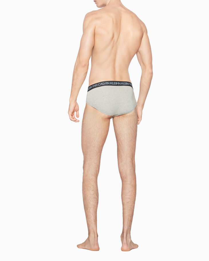 CALVIN KLEIN 1981 BOLD COTTON HIPSTER BRIEF
